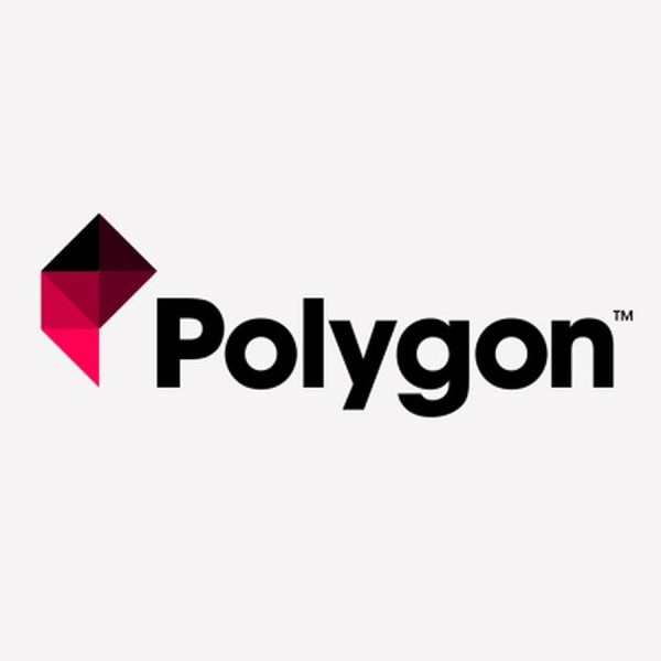 Фото ПО PICASO 3D Polygon логотип 1