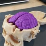 Фотография модели, напечатанной на 3D принтере Flashforge Creator Pro (1)
