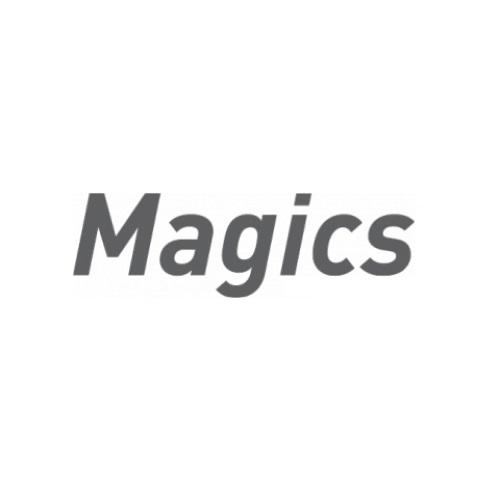 фото ПО для печати Magics