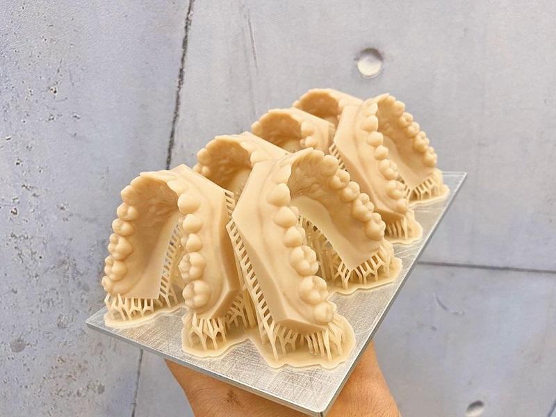 Изображение модели, напечатанной на 3D принтере Phrozen Sonic XL 4K (3)